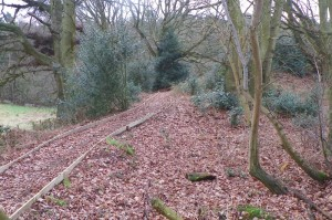 Pathway at Poors Acre